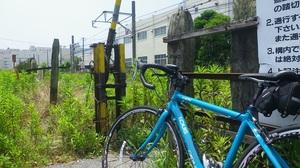 11062501_大川駅踏切.jpg