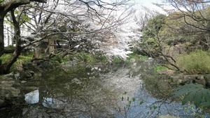 12040701_名主の滝公園.jpg
